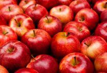 """Dr. Mihaela Bilic: """"Mai bine mâncați o felie de tort decât un kilogram de mere"""""""